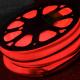 NEW Common serie FlexNeon rood in rode tube 220VDC